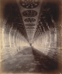 Long colonnade in the Ramalingeshvara Temple, Rameswaram 10032344